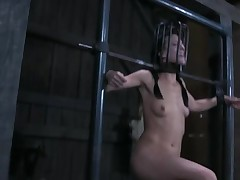 Shocking prod on bounded chick's love melons and shaved twat