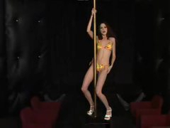 Slender playgirl works the stripper pole stripped